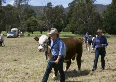 Myrtleford show 432 Pic Charlie Brown750